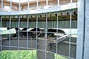 Montage der WebCams am Eichbergturm in luftiger Höhe